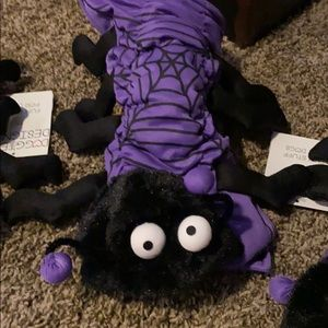 NWT cute spider Dog Halloween costume🕷🎃